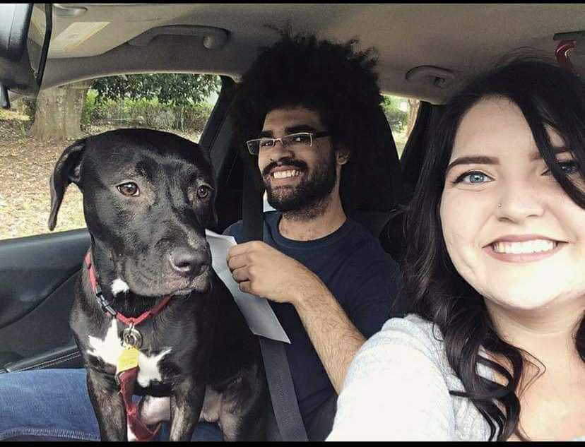 Ashleigh, Ray, & Roxanne's Personal DIY Moving Journey